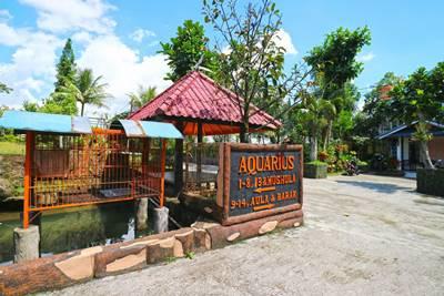 Villa Aquarius Orange